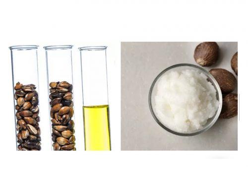 Забравените свойства на конопа (канабис, cannabis sativa, hemp)